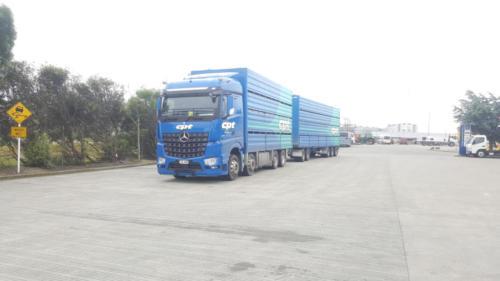Geraldine_Signs-CPT-Truck_&_Trailer2